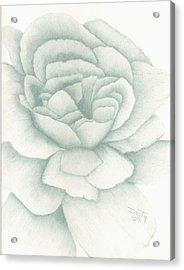 Jade Rose Acrylic Print by Dusty Reed