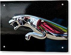Jaguar Car Emblem Acrylic Print