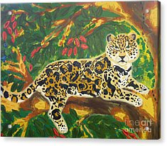 Jaguars In A Jaguar Acrylic Print by Cassandra Buckley