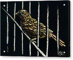 Jail Break Acrylic Print
