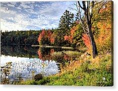 Jamie's Pond Acrylic Print