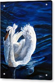 Jamie's Swan Acrylic Print by LaVonne Hand