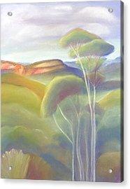 Jamison Valley Blue Mountains National Park Nsw Australia Acrylic Print
