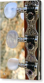 Acrylic Print featuring the photograph Jammed Pearl by Marie Neder