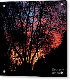 Acrylic Print featuring the photograph January Dawn by Luther Fine Art