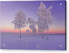 January Evening Acrylic Print