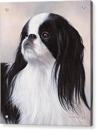 Japanese Chin Painting Acrylic Print by Rachel Stribbling