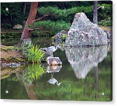 Japanese Crane Upon The Water Acrylic Print by Laura Palmer