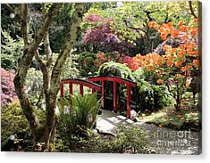 Japanese Garden Bridge With Rhododendrons Acrylic Print