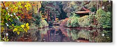 Japanese Garden In Autumn, Tatton Park Acrylic Print by Panoramic Images