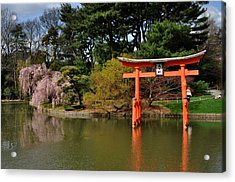 Japanese Garden With Orange Arch Acrylic Print by Diane Lent