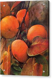 Japanese Persimmon Acrylic Print by John Christopher Bradley
