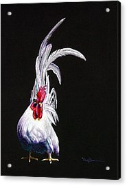 Japanese Rooster Acrylic Print by Mary Dove