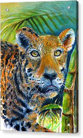 Acrylic Print featuring the painting Jaquar On The Prowl by Bernadette Krupa