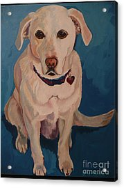 Acrylic Print featuring the painting Jasper by Janet McDonald