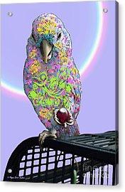 Jawbreaker-dandy Acrylic Print
