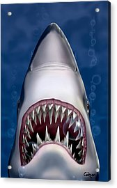Jaws Great White Shark Art Acrylic Print