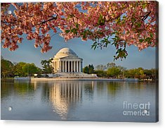 Jefferson Memorial In Spring Acrylic Print