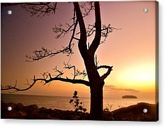 Jeju Sunset Acrylic Print by Yen