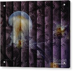 Acrylic Print featuring the photograph Jellies by Kathie Chicoine