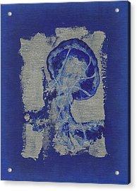 Jelly Fish Acrylic Print