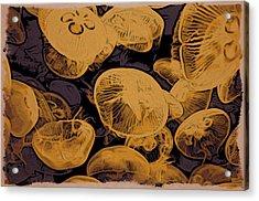 Jellyfish Kingdom Acrylic Print