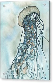 Jellyfish Three Acrylic Print by Tamara Phillips