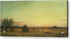 Jersey Meadows Acrylic Print by Martin Johnson Heade