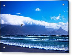 Jesse - Redbull King Of The Air Cape Town - Table Mountain  Acrylic Print by Charl Bruwer