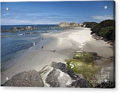 Jessie Honeyman Memorial State Park Acrylic Print by Peter French
