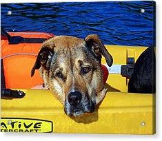 Jessie Kayaking Acrylic Print