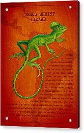 Jesus Lizard Acrylic Print by Aged Pixel
