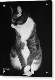 Jetson Acrylic Print