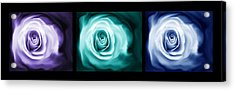 Jewel Tone Abstract Roses Triptych Acrylic Print by Jennie Marie Schell