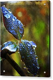 Jeweled Leaves Acrylic Print by Leah Moore