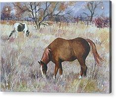 Jill's Horses On A November Day Acrylic Print