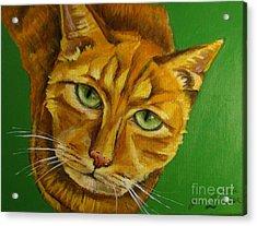 Jing Jing - Cat Acrylic Print