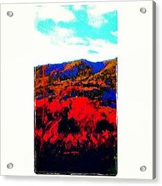 #jj_forum_0543 #winecountry Acrylic Print