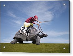 Jockey Over A Turtle Acrylic Print by Buena Vista Images