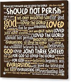 John 3-16 20130622bwwa85 Acrylic Print by Wingsdomain Art and Photography
