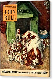 John Bull 1952 1950s Uk Dogs Puppies Acrylic Print by The Advertising Archives