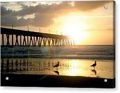 Johnnie Mercer's Pier With Birds Acrylic Print