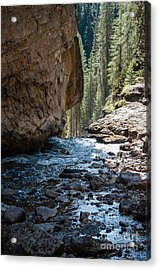 Johnson Falls 2.0568 Acrylic Print by Stephen Parker