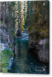 Johnson Falls Canada 2.0536  Acrylic Print by Stephen Parker