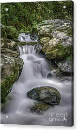 Jones Gap Cascade Acrylic Print