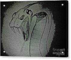 Acrylic Print featuring the photograph Jonny's Snake  by Mindy Bench