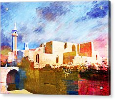 Jordan 02 Acrylic Print by Catf