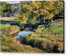 Jordan Creek Autumn Acrylic Print