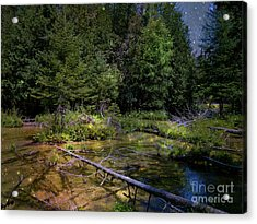 Jordan Headwaters In The Moonlight Acrylic Print by MJ Olsen