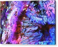 Jordan Acrylic Print by Art Gallery Earth